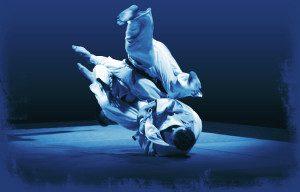 Martial arts bjj in Portland