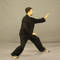 Tai Chi Training in Portland