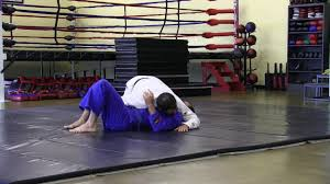 Japanese Jiu Jitsu Vs Brazilian Jiu Jitsu