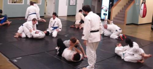 Gracie Jiu Jitsu classes in portland