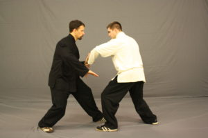 Differences of Tai Chi
