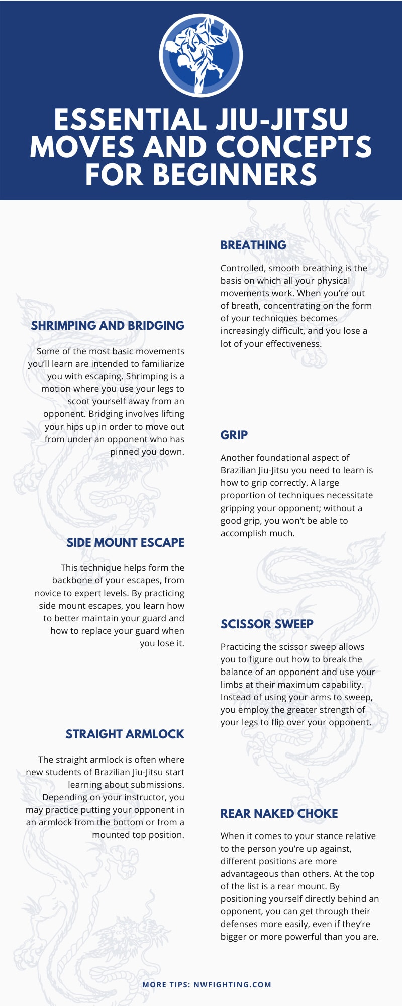 Essential Jiu-Jitsu Moves and Concepts for Beginners infographic